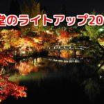 永観堂のライトアップ2018年★京都の紅葉スポット見頃とアクセス方法は?