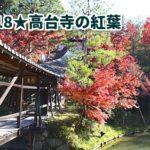 京都の紅葉2018年スポット!ライトアップとプロジェクションマッピングなら高台寺!