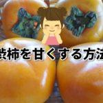 【失敗しない】渋柿を甘く(渋抜き)する簡単な6つの方法